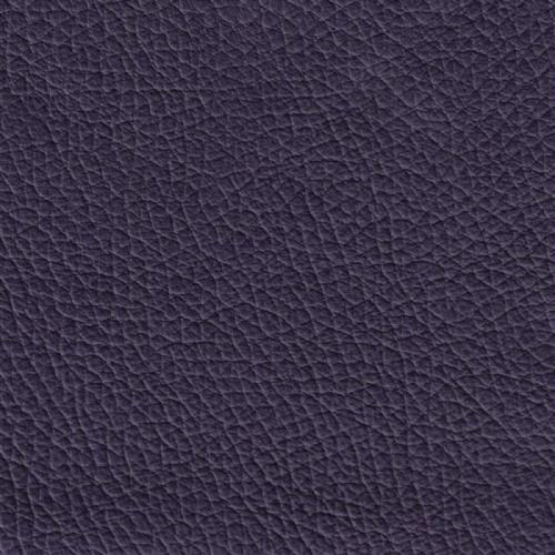 Colore purple