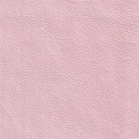Colore rosa 2009