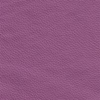 Colore violett