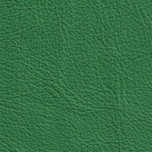 Handmuster für Echtleder Bezug Napoli Colore grasgrün