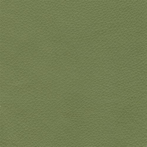 Handmuster für Echtleder Bezug Napoli Classic linde / Z 59