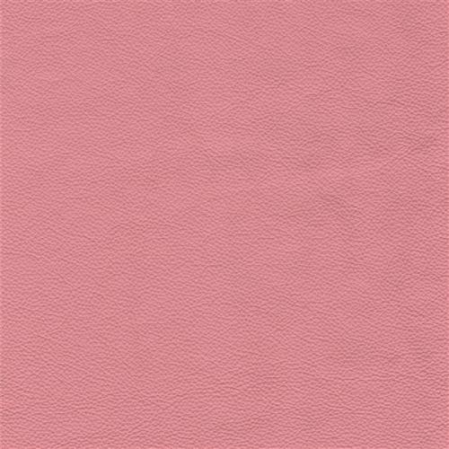 SR rosa